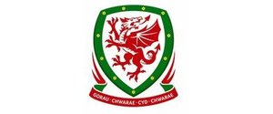 Football Association of Wales