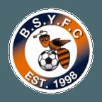 Bradley Stoke Youth FC