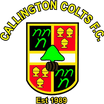 Callington Colts FC