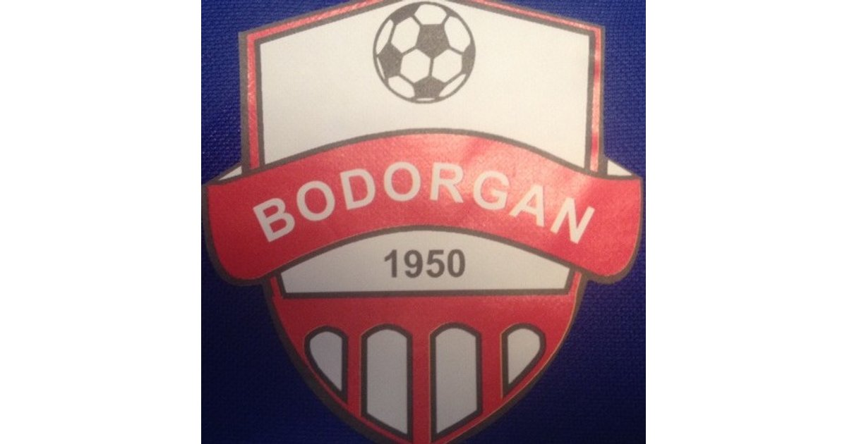 Image result for bodorgan fc
