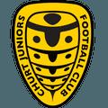 Churt Juniors Football Club
