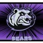 BEARS Netball Club