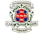 Yorkshire Terriers RUFC