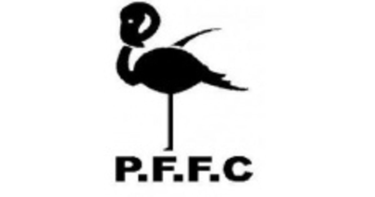 Pink Flamingos Football Club
