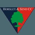Horsley & Send Cricket Club