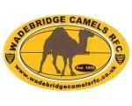 Wadebridge Camels RFC