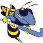 Braintree Hockey Club