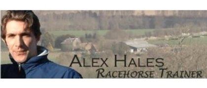 Alex Hales Racing