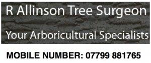 R Allinson Tree Surgeon