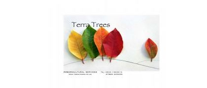 Terra Trees