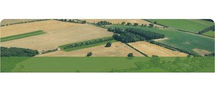 Barton Place Farms