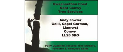 Nant Conwy Tree Services