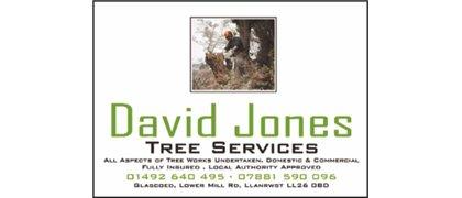 David Jones Tree Services