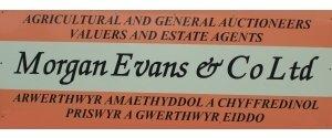Morgan Evans & Co LtD.