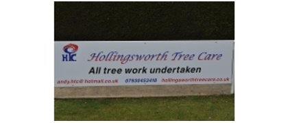 Hollingsworth Tree Care