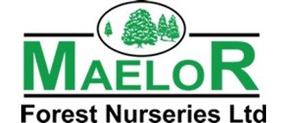 Maelor Forest Nurseries Limited
