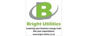 Bright Utilities Ltd