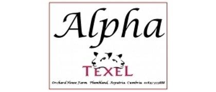 Alpha Texel