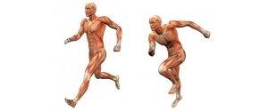 Penfrey Sports & Massage Therapy