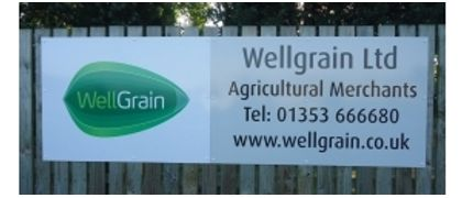 Wellgrain Ltd