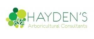 Hayden's
