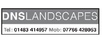 DNS Landscapes