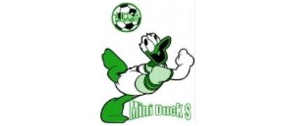 MiniDucks