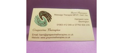 Grapevine Therapies