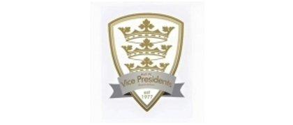 Hull Vice Presidents