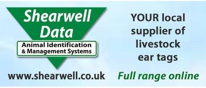 Shearwell Data