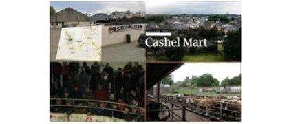 Cashel Mart