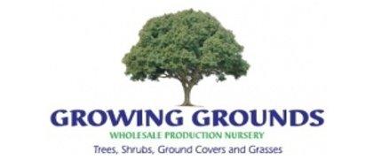 Growing Grounds Nursery