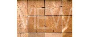 MGM Timber Ltd