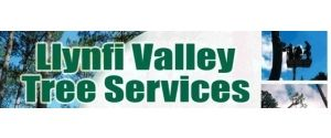 Llynfi Valley Tree Services
