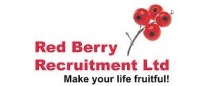 Redberry Recruitment