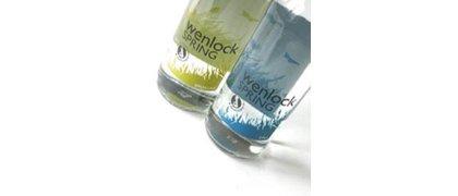 Wenlock Water
