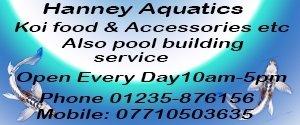 Hanney Aquatics