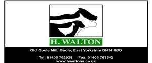 H.Walton Ltd