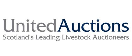 United Auctions
