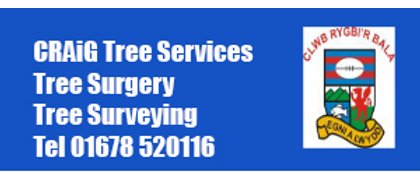 CRAiG Tree Services