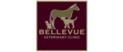 Bellevue Veerinary