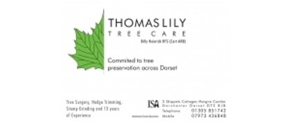 Thomas Lilly Tree Care