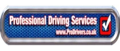 Professional Driving Services