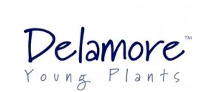 Delamore Plants