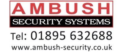 Ambush Security Systems