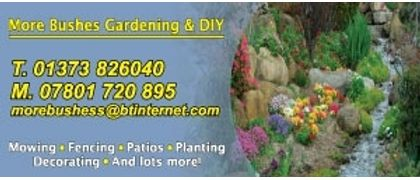 More Bushes Gardening and DIY