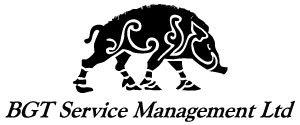 BGT Service Management