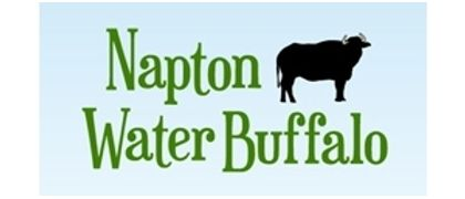 NAPTON WATER BUFFALO