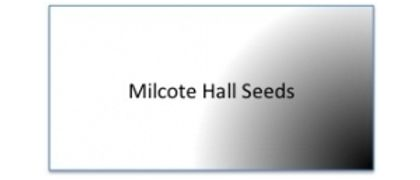 Milcote Hall Seeds