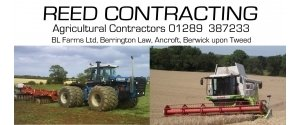Reed Contracting